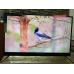 Телевизор BBK 50LEX8161UTS2C 4K Ultra HD на Android, 2 пульта, HDR, премиальная аудио система в Джанкое фото 9